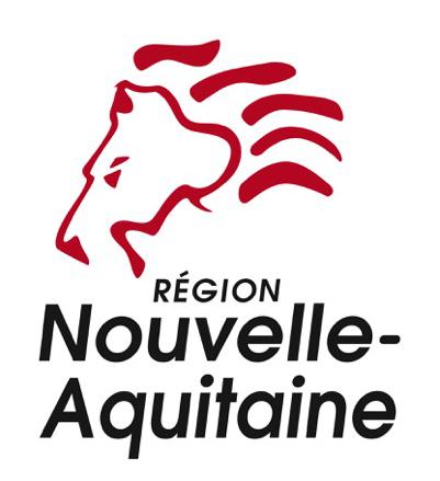 nouveau logo region
